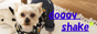 doggy shake
