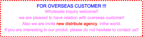 For Overseas Customer
